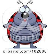 Plump Ladybug