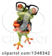Cutom Frog Collection