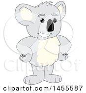 Koala Bear School Mascots [Complete Series]