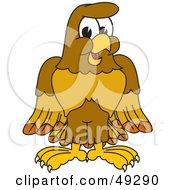Hawk Mascots [Complete Series]