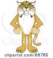 Bobcat Mascots [Complete Series]