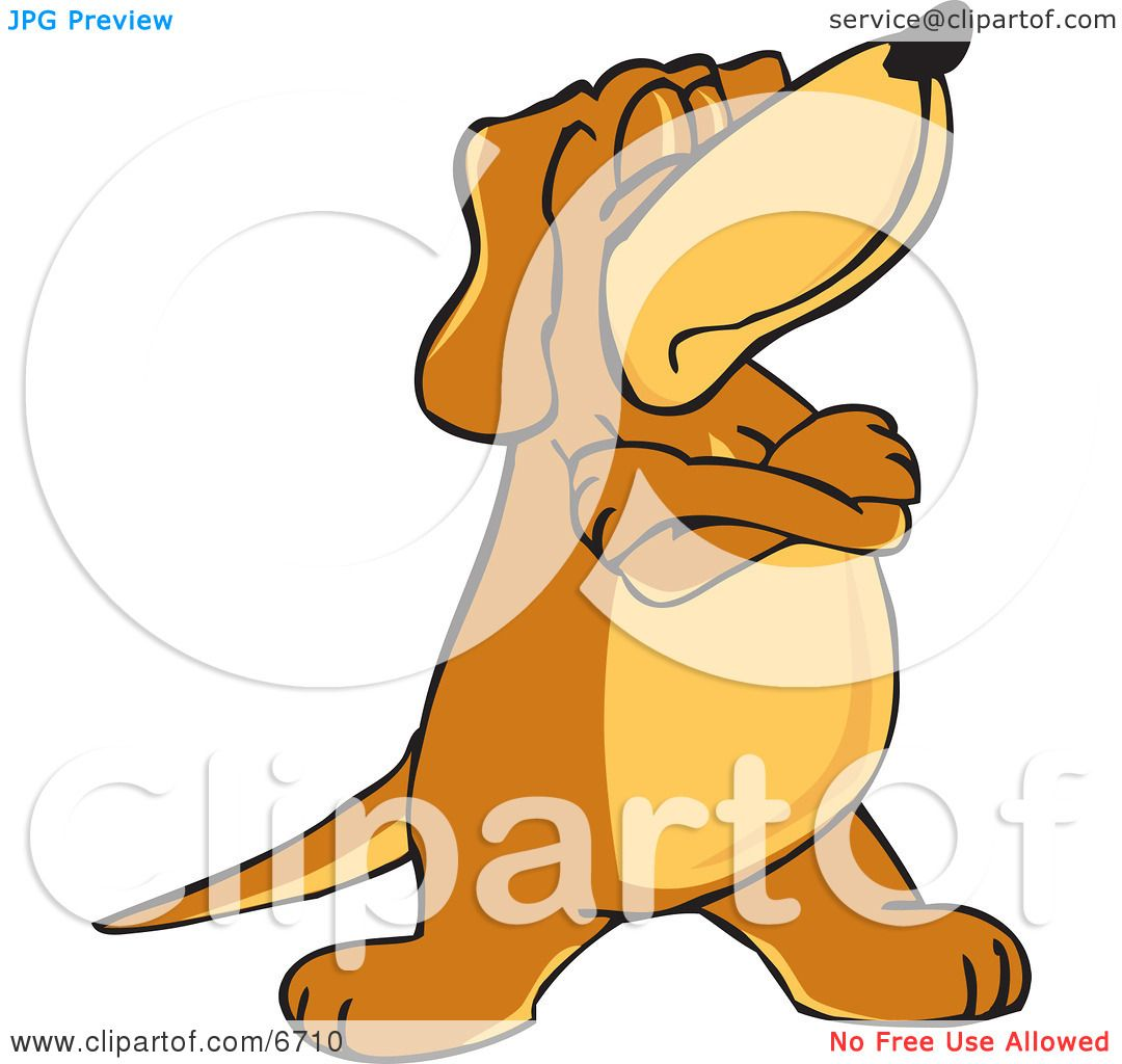 Brown Dog Mascot Cartoon Character With Crossed Arms ...