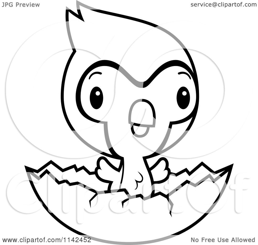 Cartoon Clipart Of A Black And White Cute Baby Bluejay ...