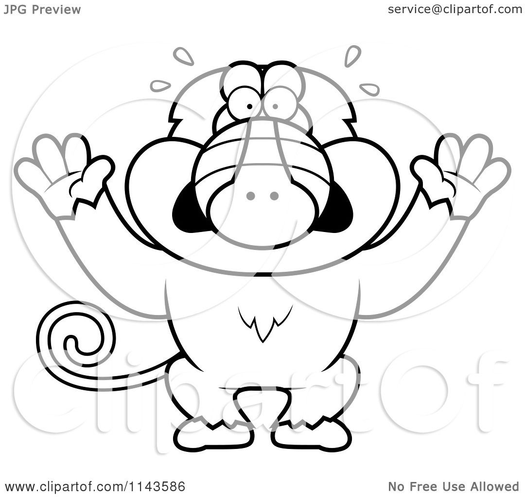 Baboon Printable Coloring Pages