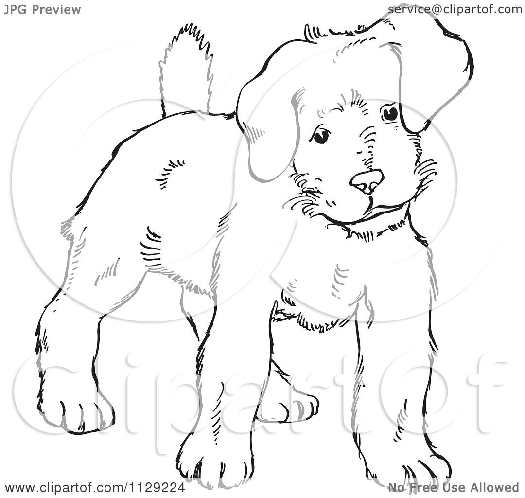 ... Puppy Dog - Black And White Vector Coloring Page by Picsburg #1129224