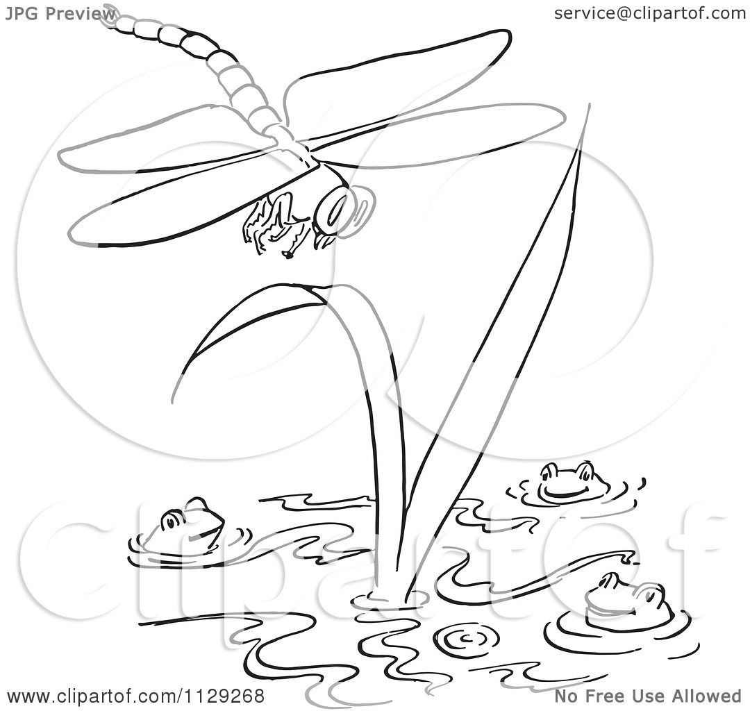 cartoon clipart of an outlined dragonfly over frogs in a pond
