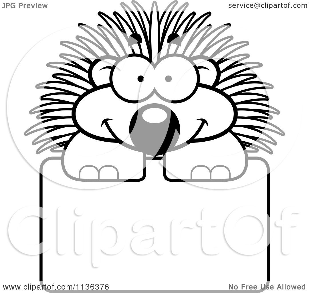 Porcupine Ash From Sing Coloring Page Free Printable Coloring