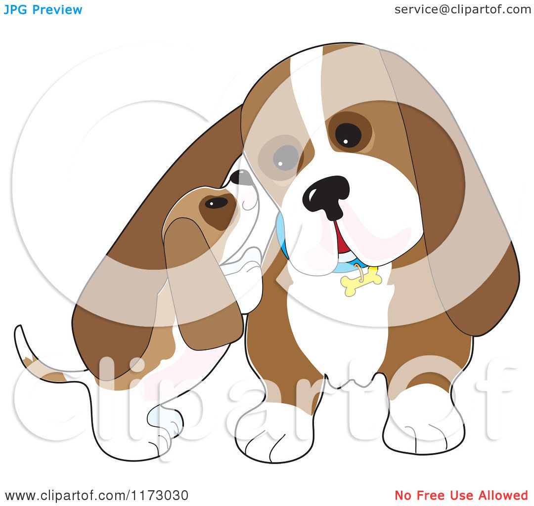 Cartoon of a Basset Hound Puppy Whispering in His Dads Ear - Royalty ...
