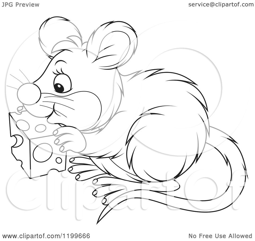 clipart mouse eating cheese - photo #43