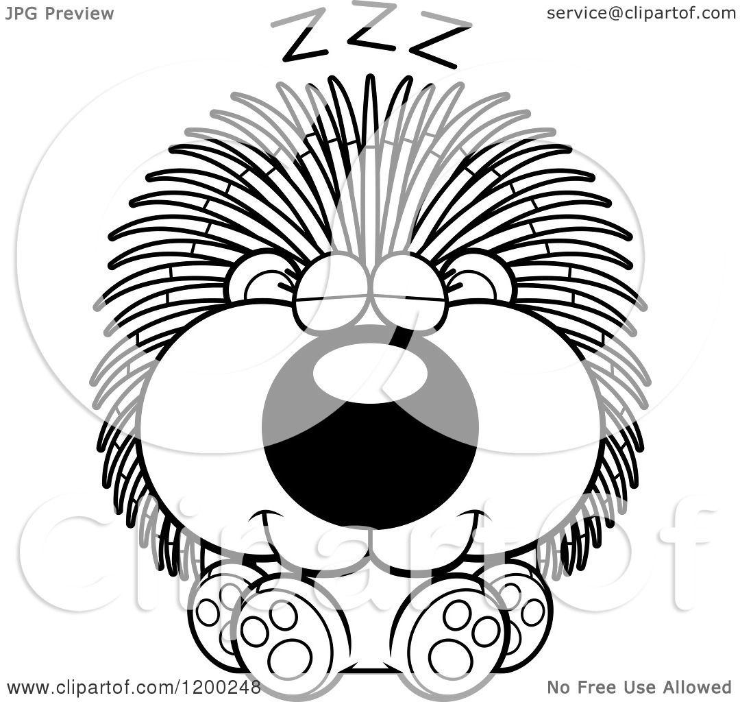 cartoon of a black and white cute sleeping porcupine