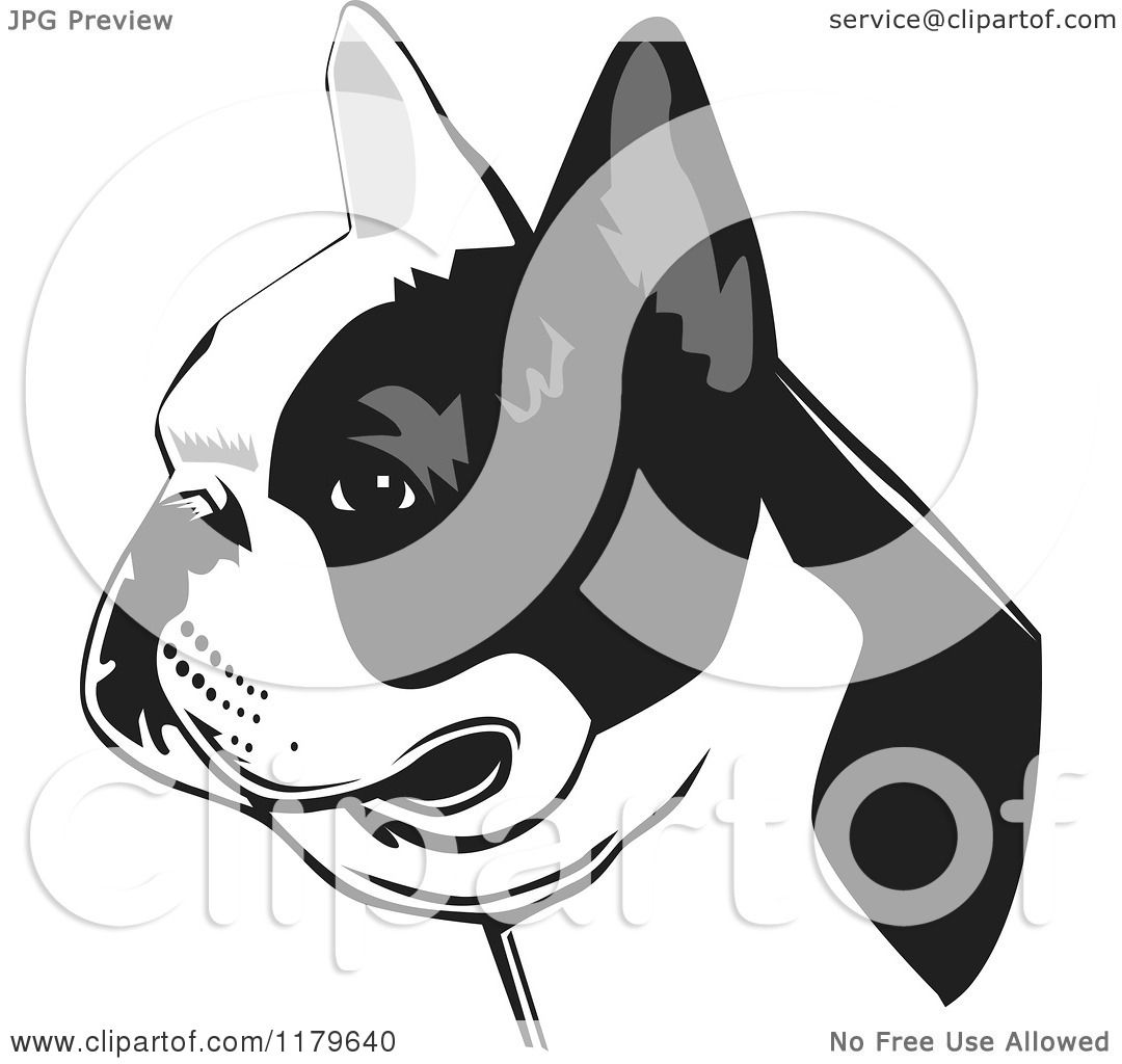 aa7f4f59a928 Cartoon of a Black and White French Bulldog Face in Profile - Royalty Free  Vector Clipart