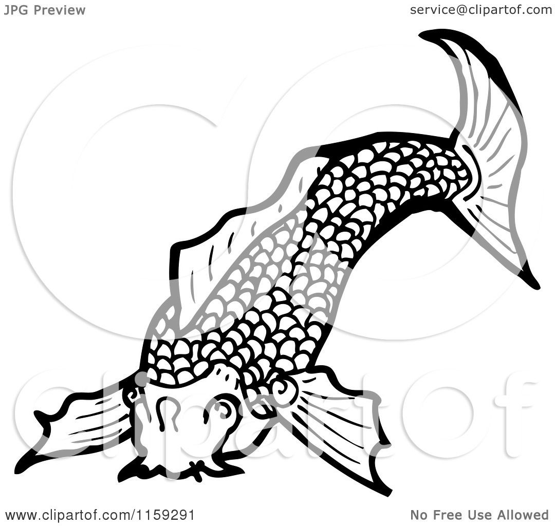 Cartoon of a Black and White Koi Fish - Royalty Free Vector ...