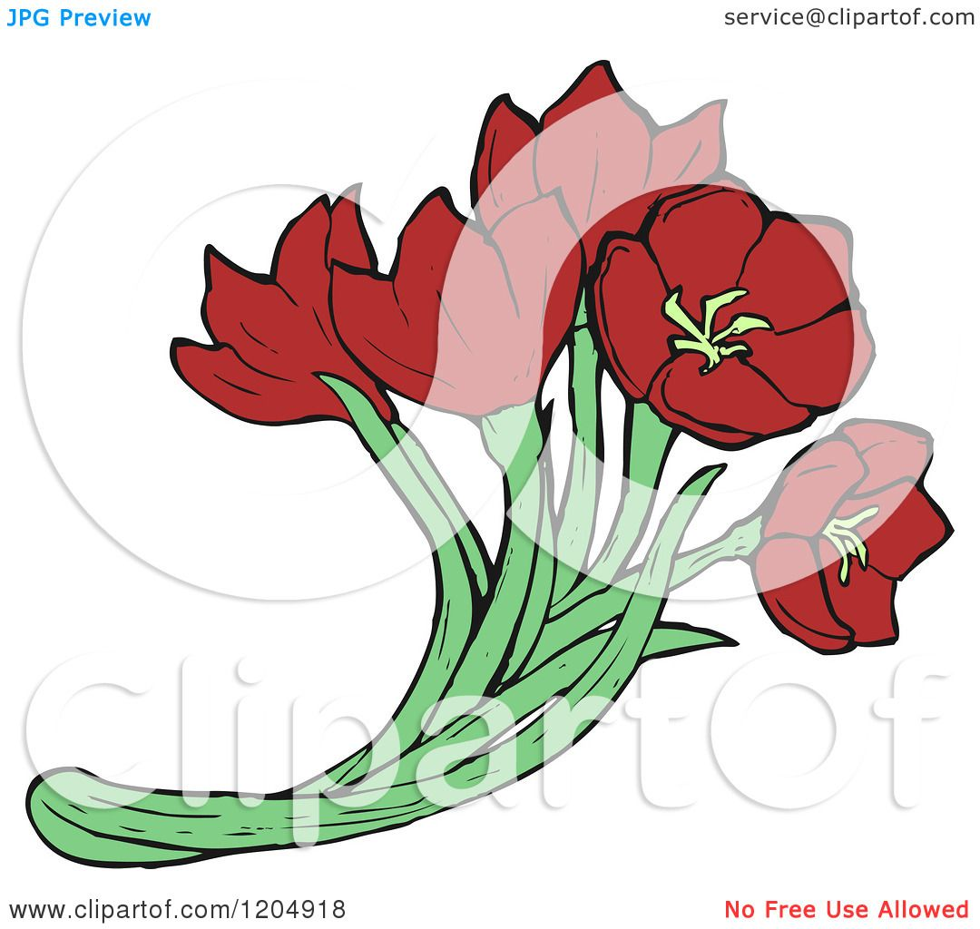 Cartoon of a Bouquet of Red Flowers - Royalty Free Vector ...