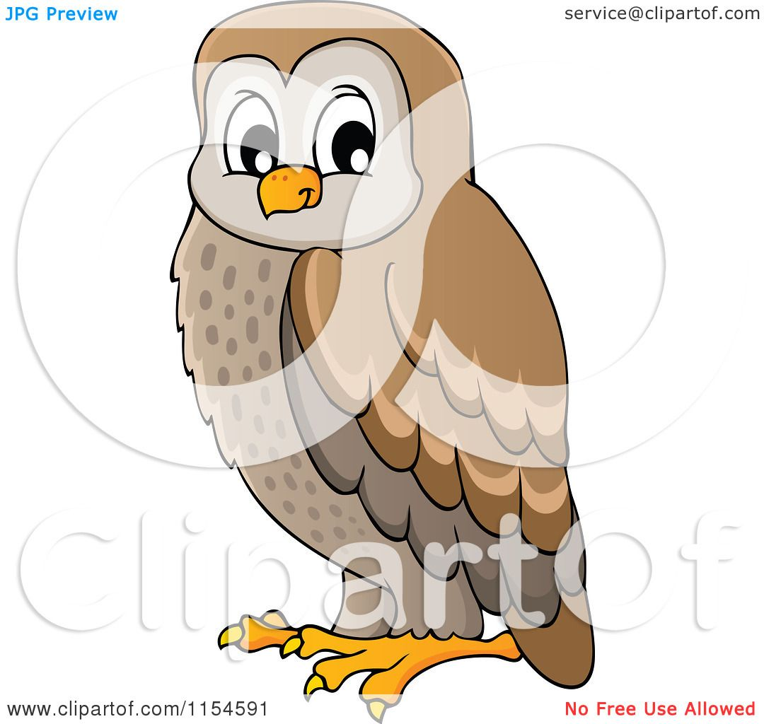 Cartoon of a Brown Owl - Royalty Free Vector Clipart by ...