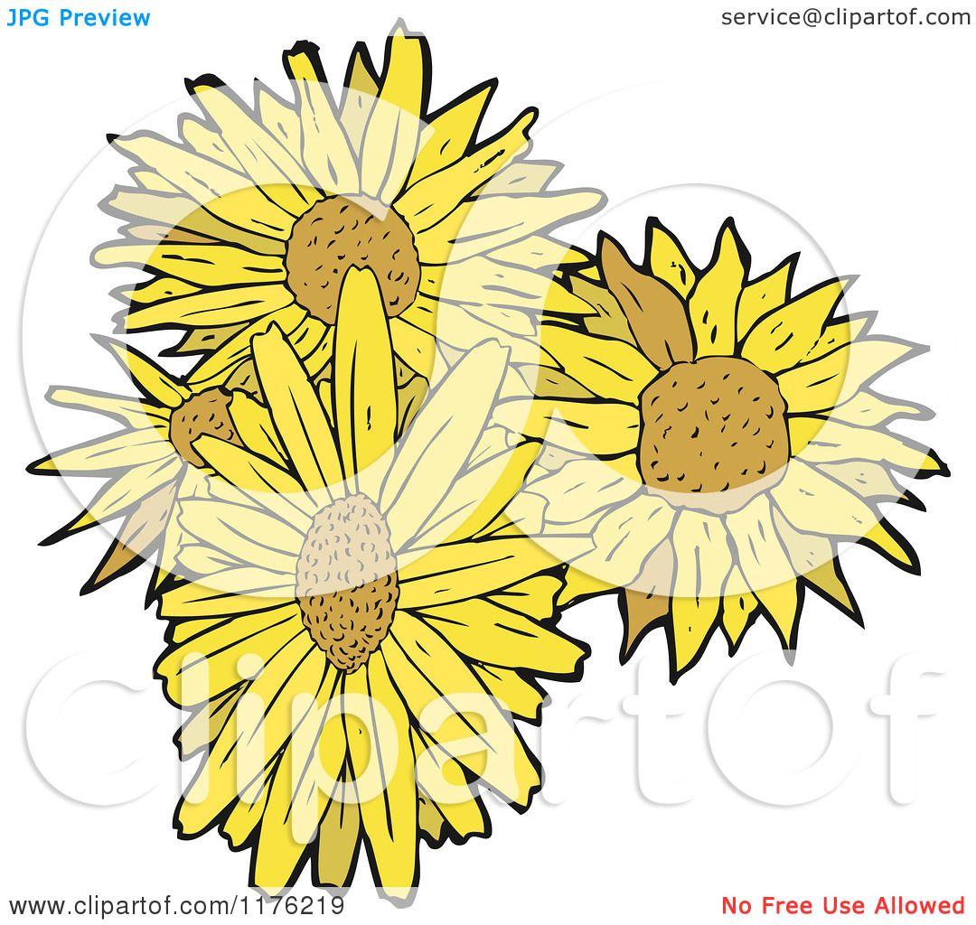 Cartoon Of A Bunch Sunflowers