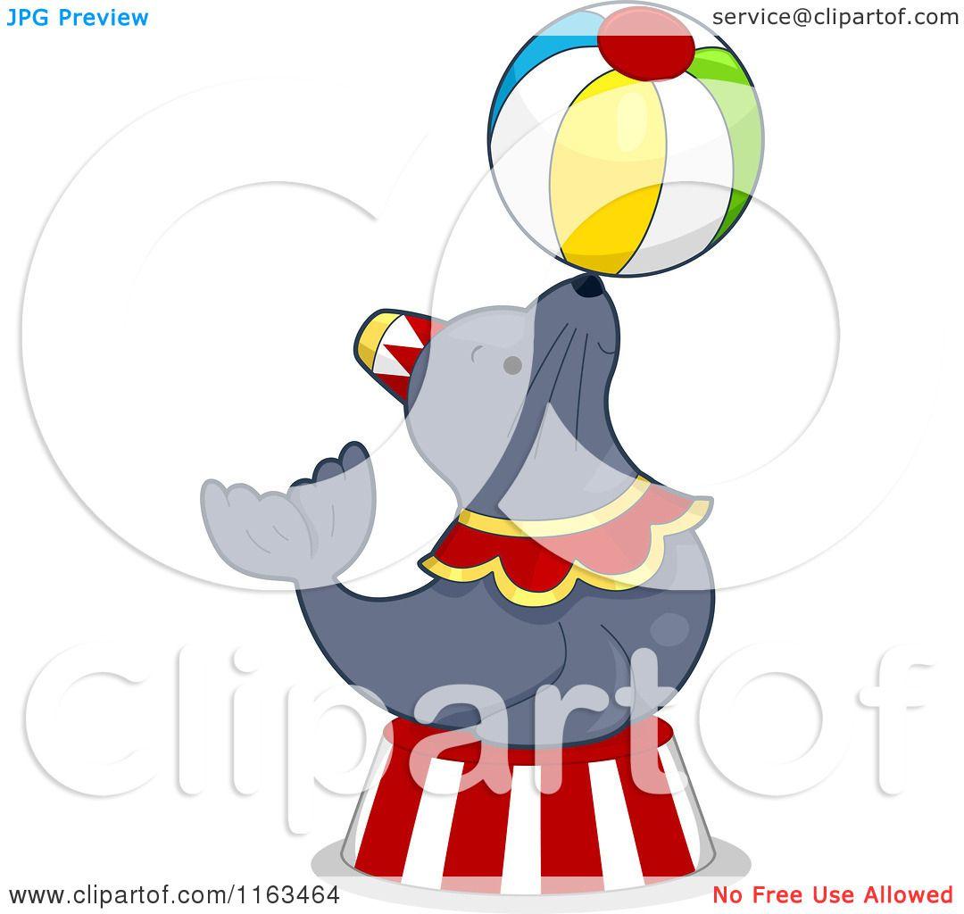 cartoon of a circus seal balancing a ball royalty free vector rh clipartof com Selkie Art Selkie OC