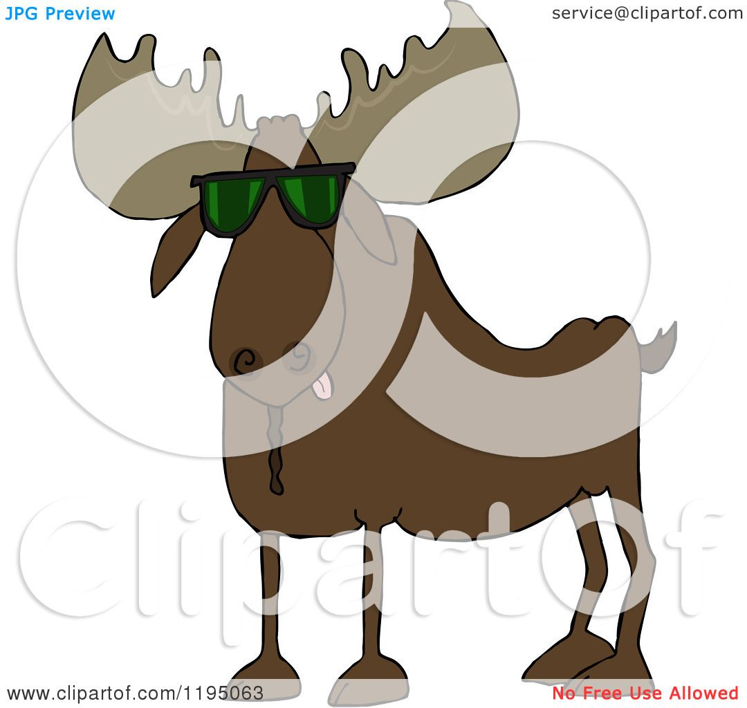 cartoon of a cool moose wearing sunglasses royalty free vector