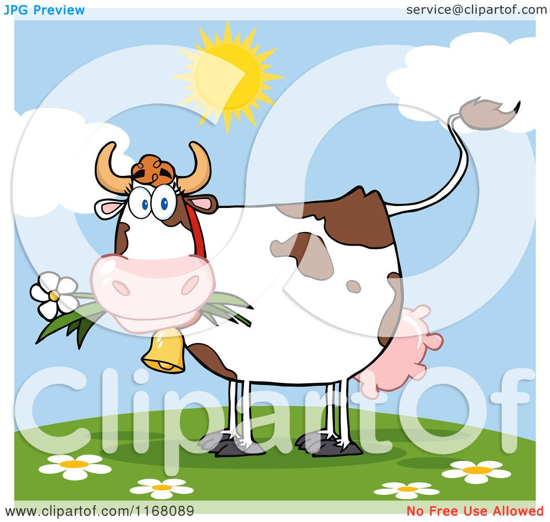cartoon of a cow eating a daisy flower on a hill royalty free