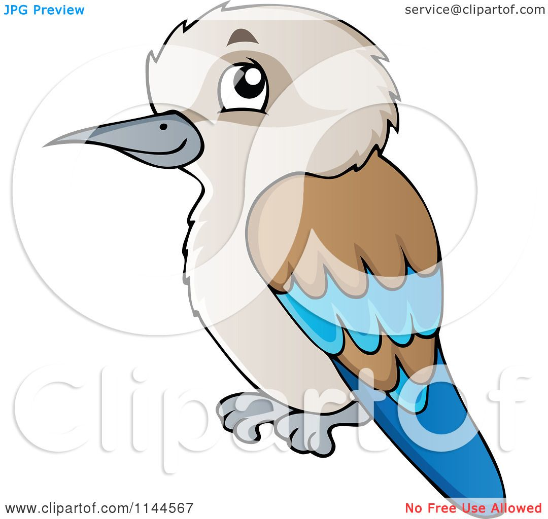 Cartoon Of A Cute Aussie Kookaburra Bird Royalty Free Vector Clipart By Visekart 1144567