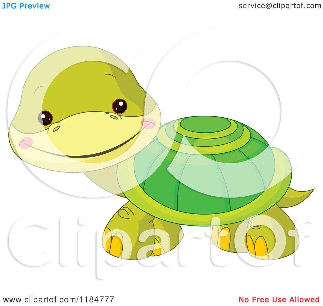Cartoon Of A Cute Baby Turtle Smiling Royalty Free Vector