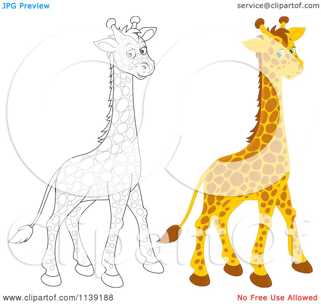 cartoon of a cute colored and black and white giraffe