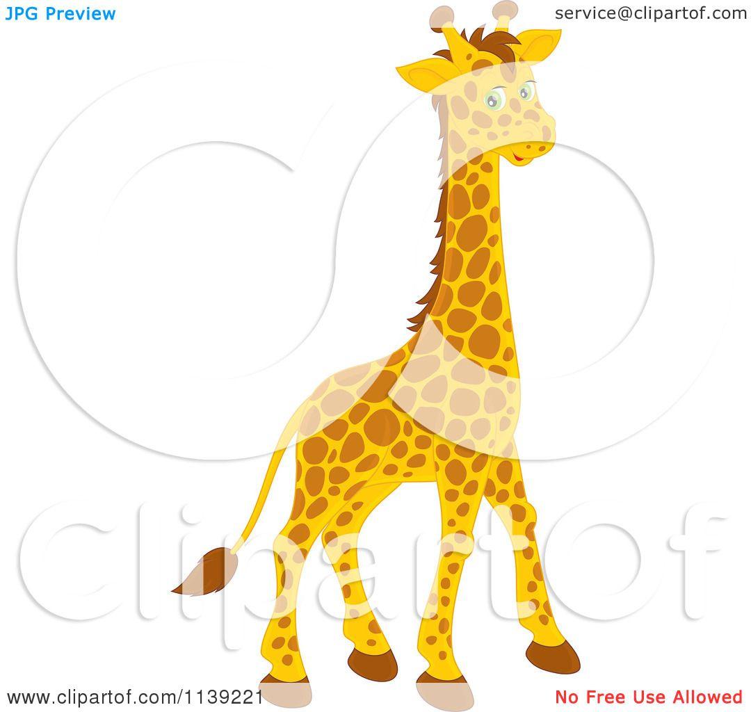 cartoon of a cute giraffe royalty free vector clipart by alex
