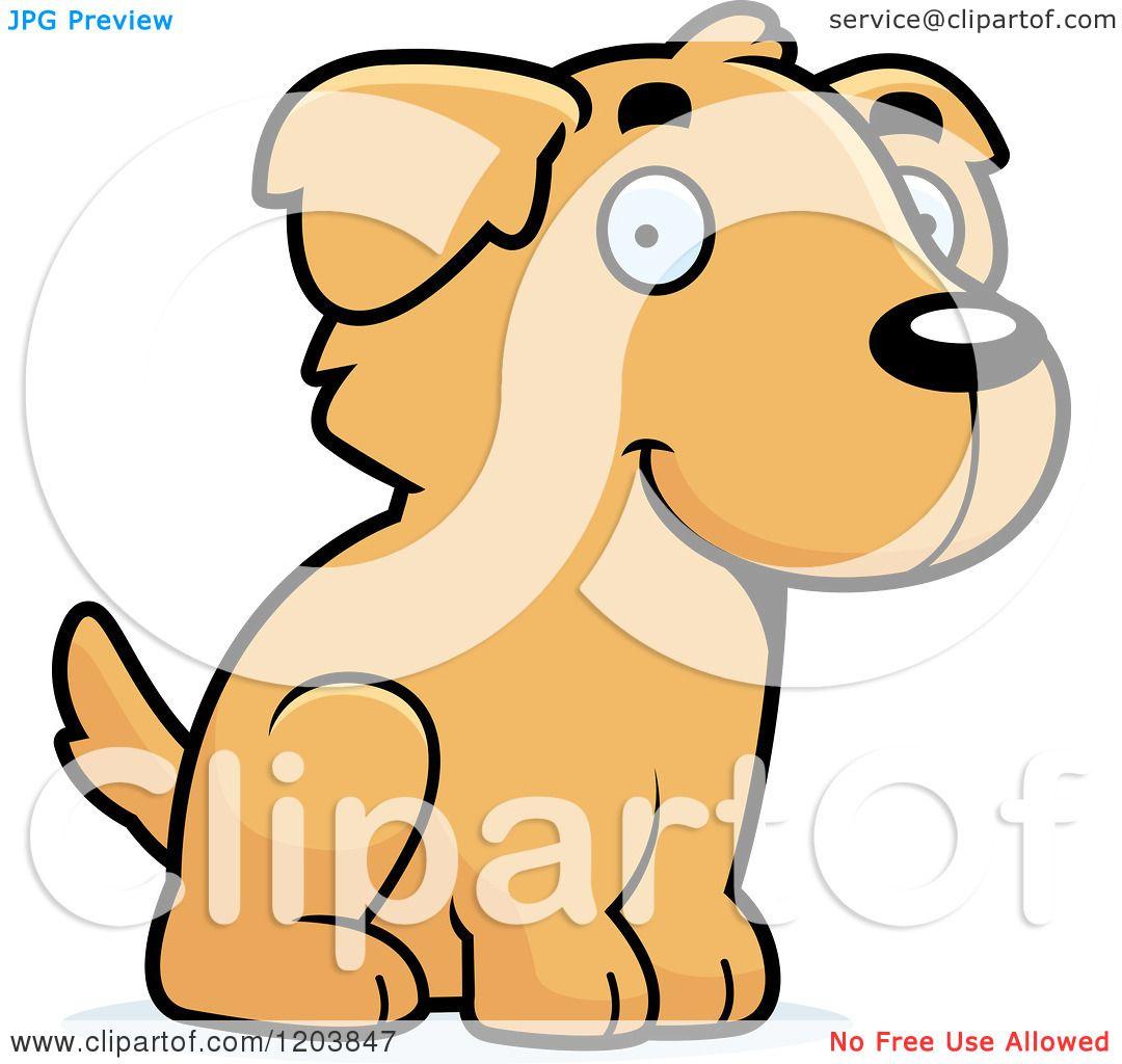 Golden Retriever Clip Art  Royalty Free  GoGraph