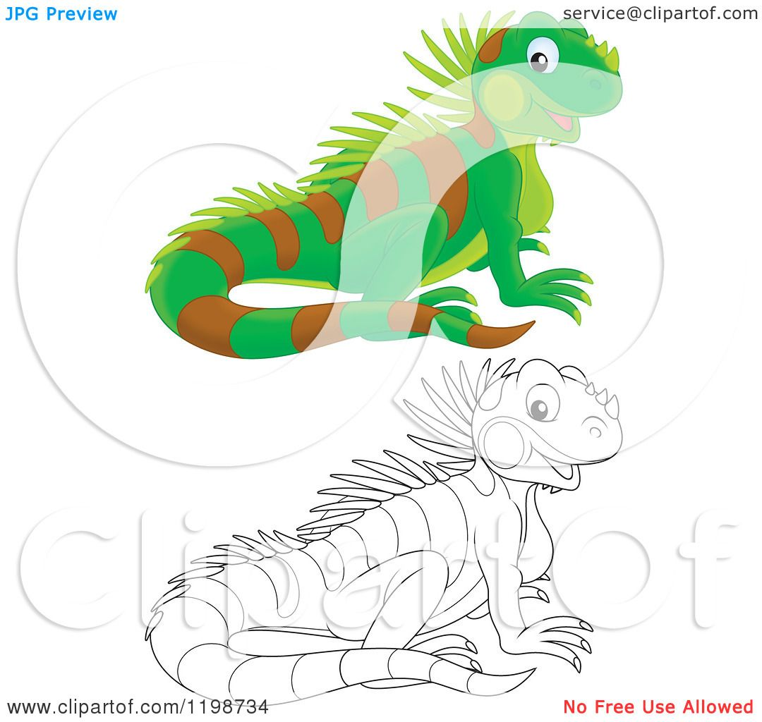 Pin Lizards Funny Cartoon Chameleon Lizard Vector Gecko Tattoo Picture