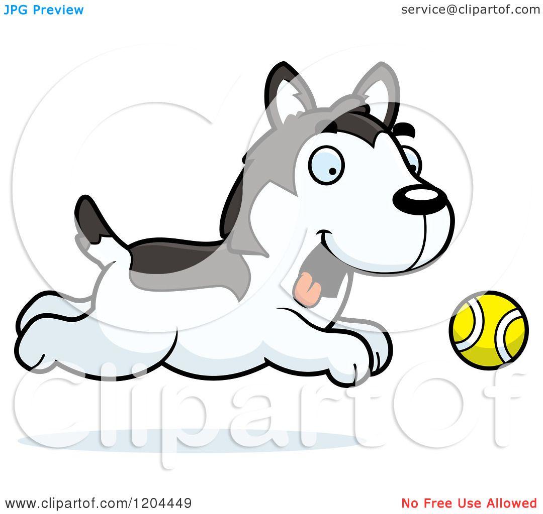Cartoon Of A Cute Husky Puppy Dog Chasing Ball Royalty Free Vector