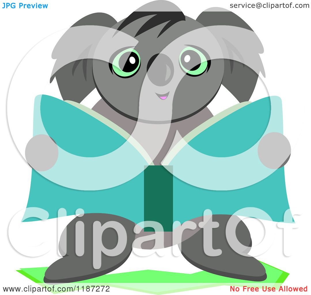 cartoon of a cute koala reading a book royalty free vector