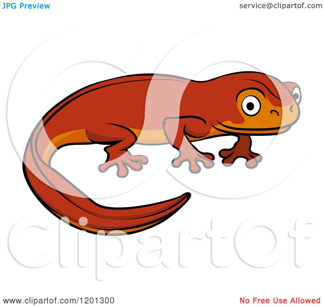 clipart newt - photo #34