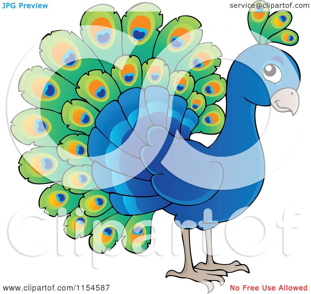 Cute Peacock Drawings Cartoon of a Cute Peacock