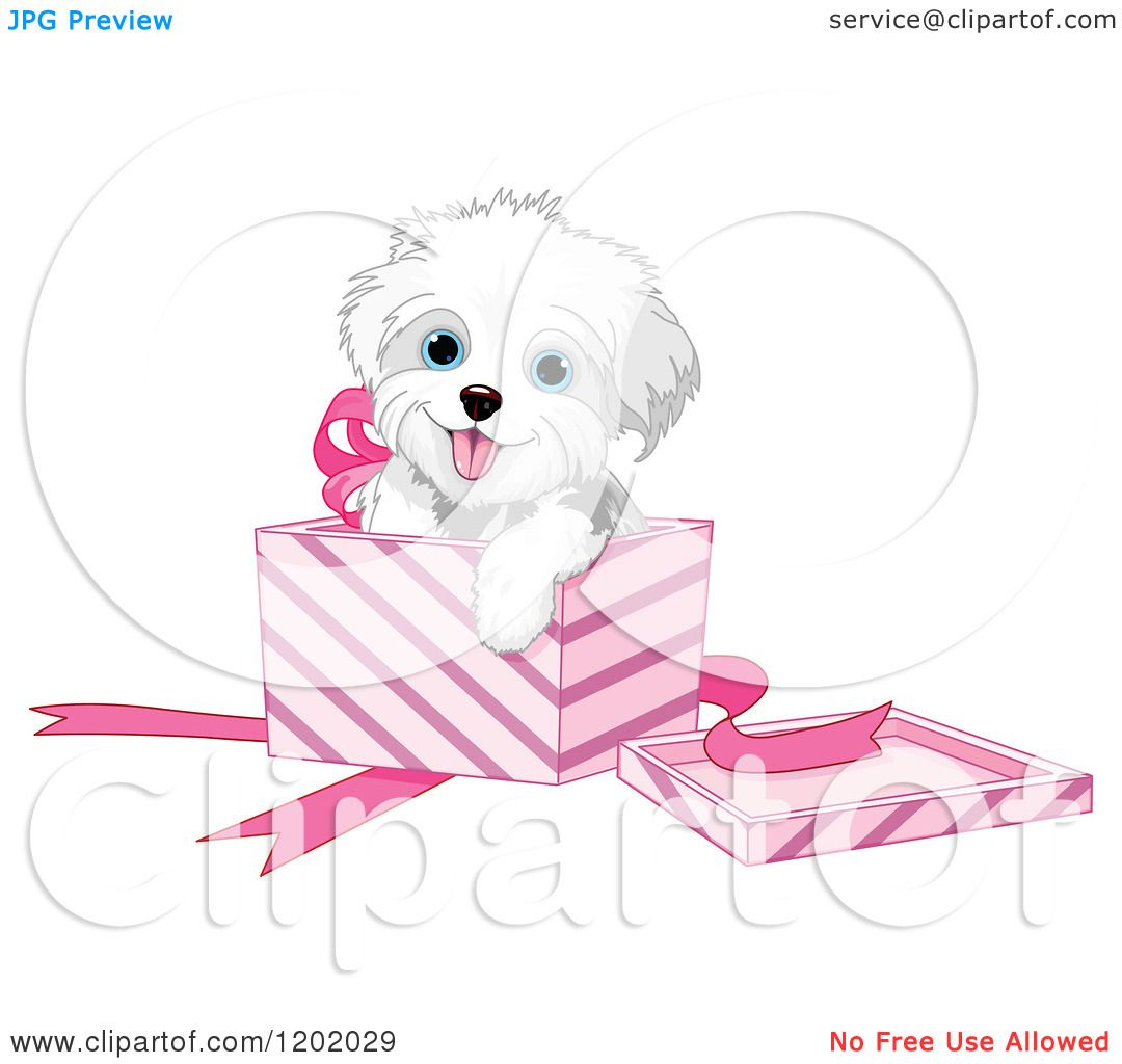 maltese dog clipart - photo #50