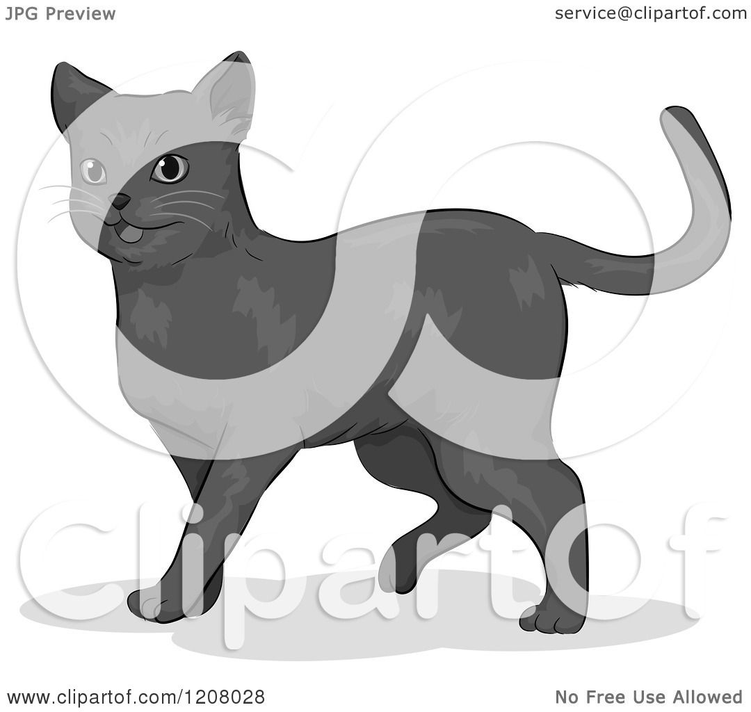 Cartoon Of A Cute Russian Blue Cat