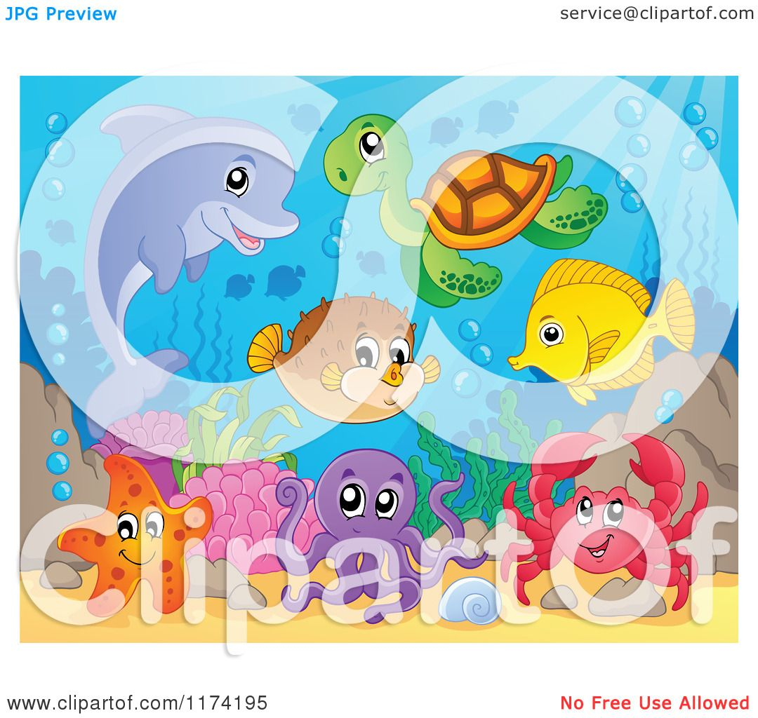 Cartoon  Of A Dolphin  Sea  Turtle  Starfish  Octopus  Crab  Fish  And  Puffer  Royalty  Free  Vector  Clipart
