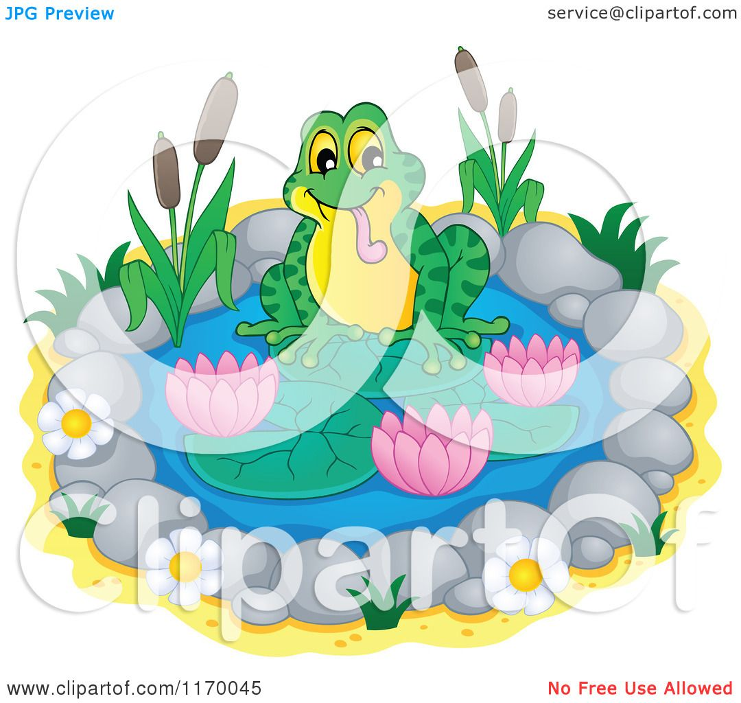 cartoon of a frog on a small lily pond royalty free vector