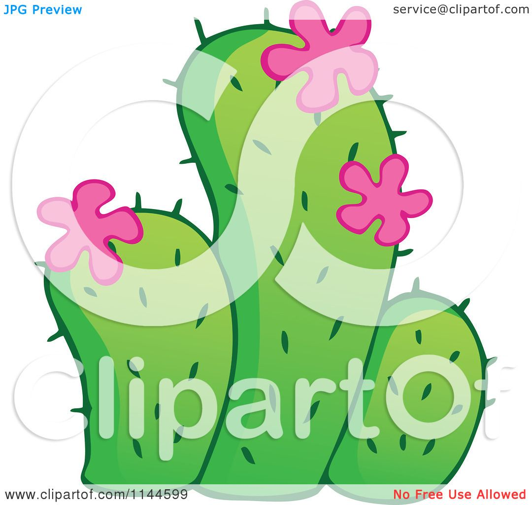 Cartoon of a green cactus plant with pink flowers royalty free cartoon of a green cactus plant with pink flowers royalty free vector clipart by visekart mightylinksfo