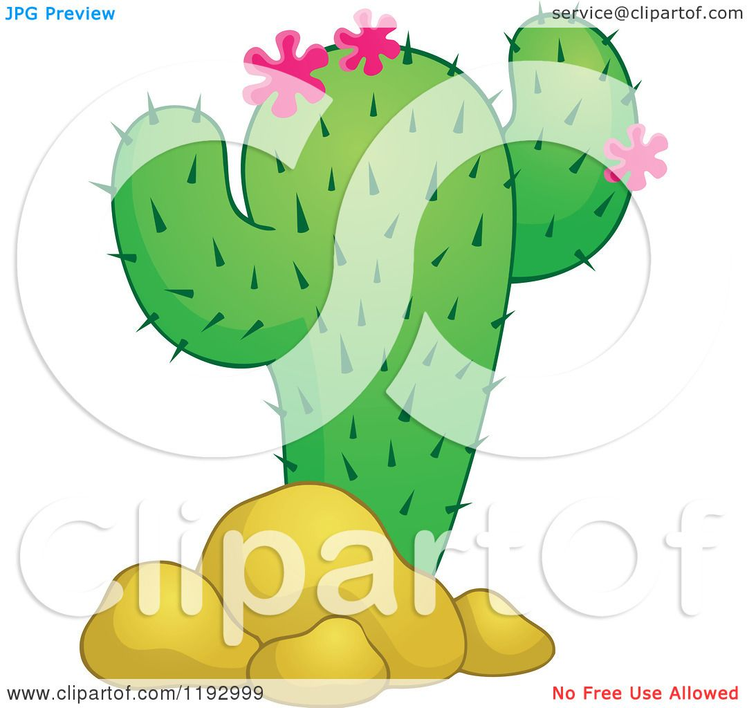 Cartoon of a green cacuts plant with pink flowers and boulders cartoon of a green cacuts plant with pink flowers and boulders royalty free vector clipart by visekart mightylinksfo