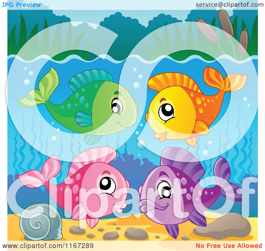 Freshwater fish clipart - Cartoon Of A Group Of Colorful Freshwater Fish Royalty Free Vector Clipart By Visekart