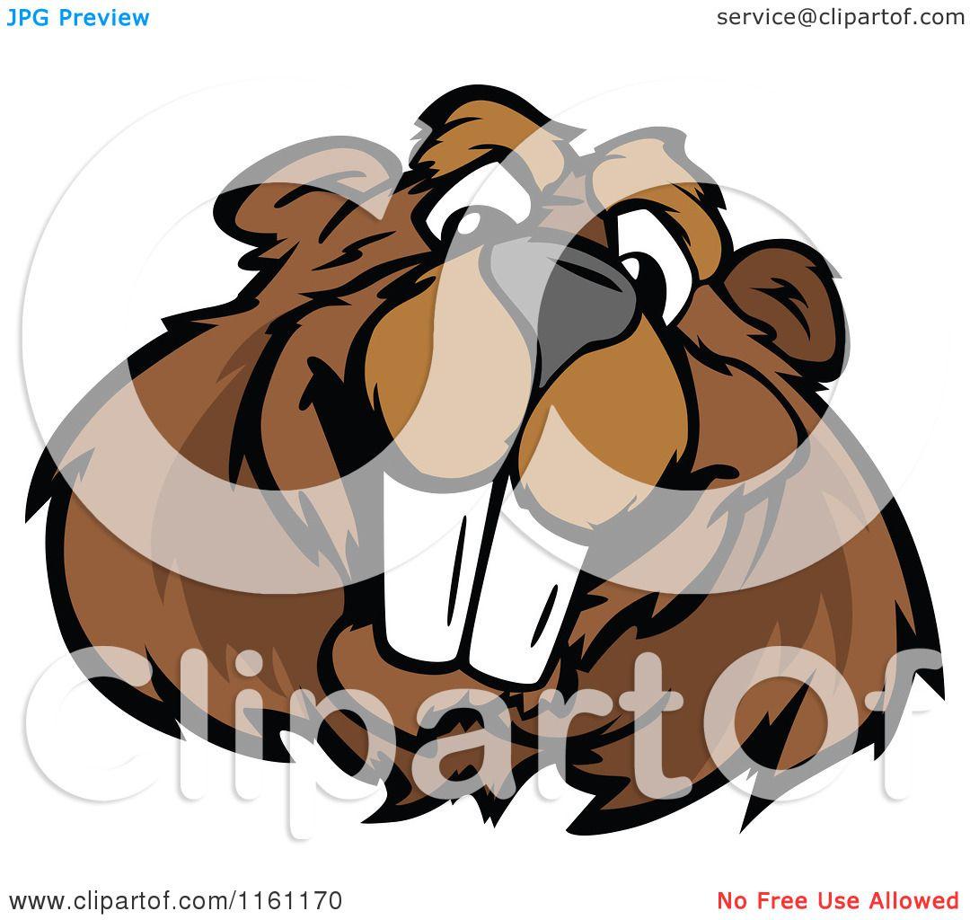 Cartoon Of A Happy Beaver Mascot Face