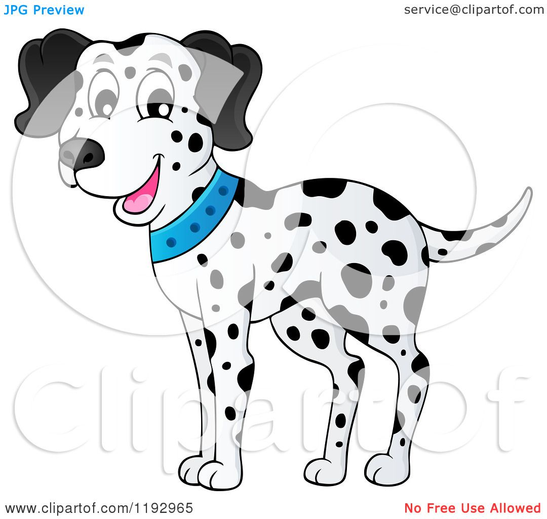 Cartoon of a Happy Dalmatian Dog Wearing a Blue Collar - Royalty Free ...