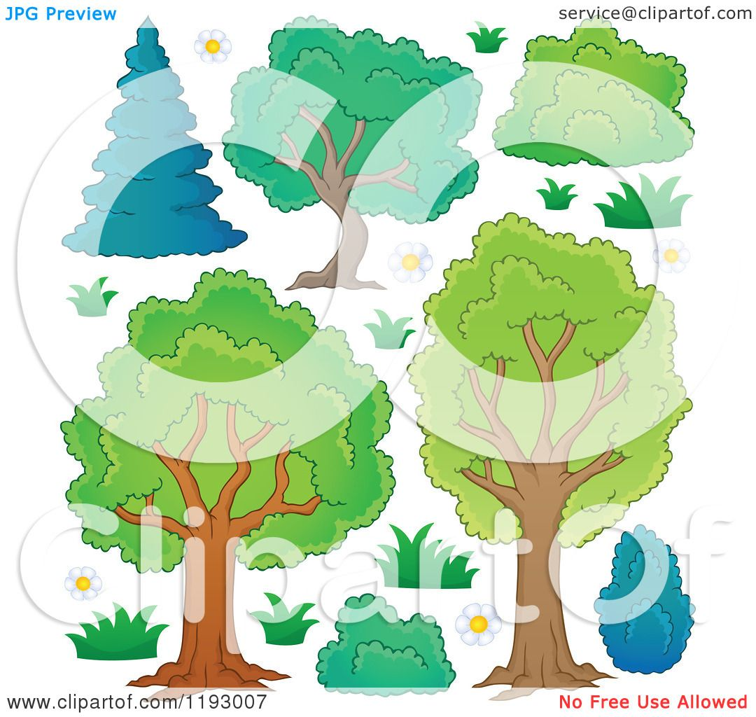 Bushes And Shrubs Clipart Lush Trees With Shrubs And