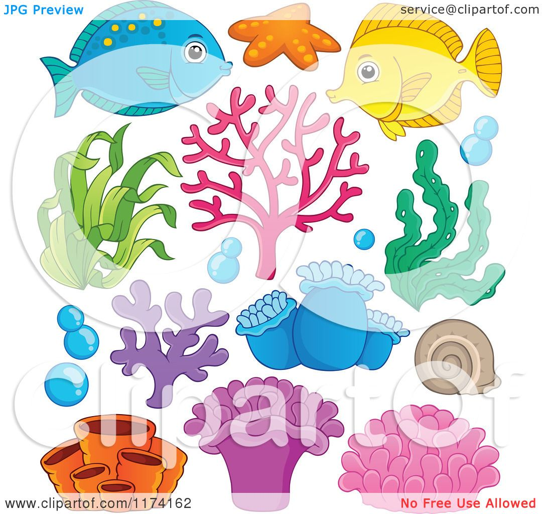 Cartoon Of A Marine Fish Corals Plants And Anemones