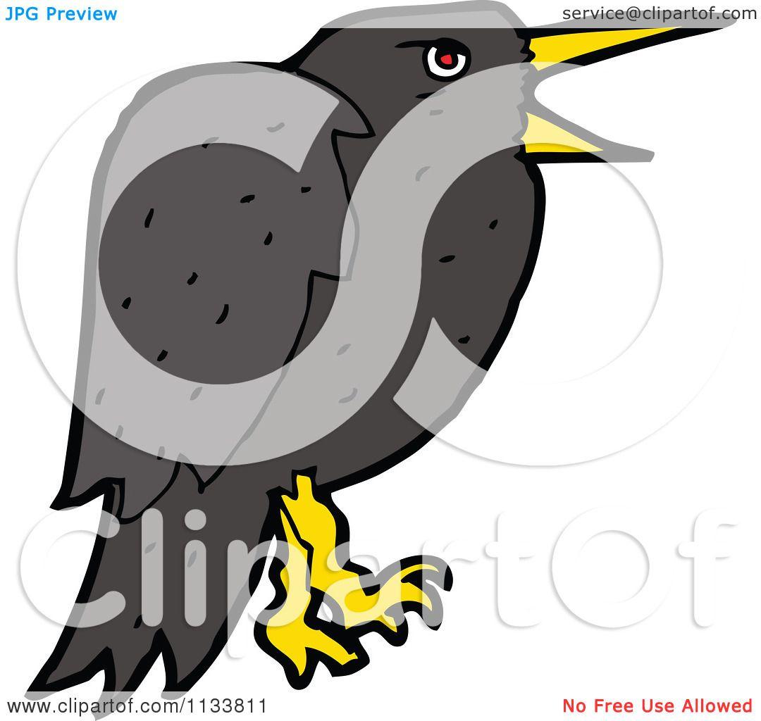 Cartoons Birds Images Cartoon of a Raven Crow Bird 2