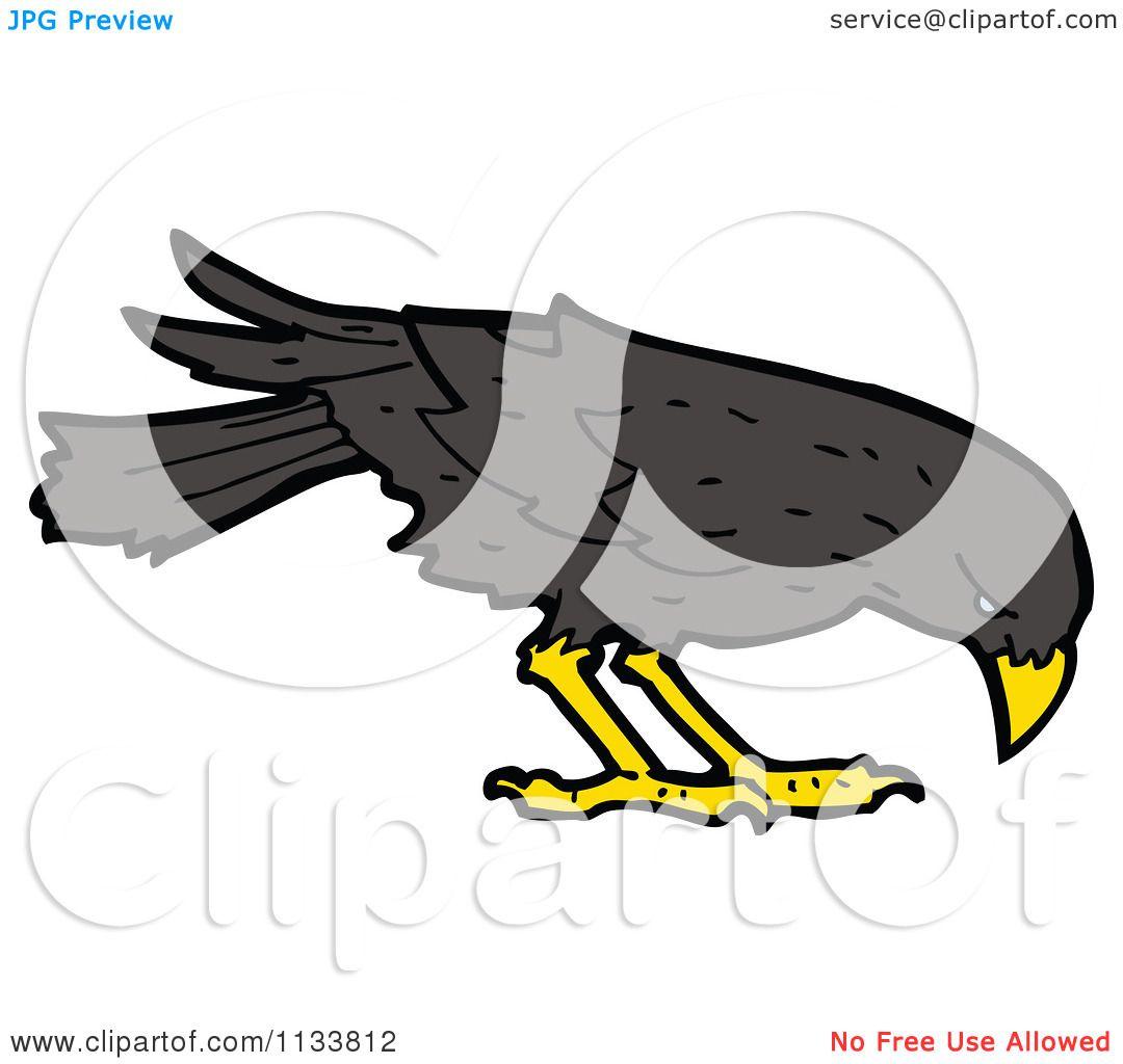 Cartoons Birds Images Cartoon of a Raven Crow Bird 3