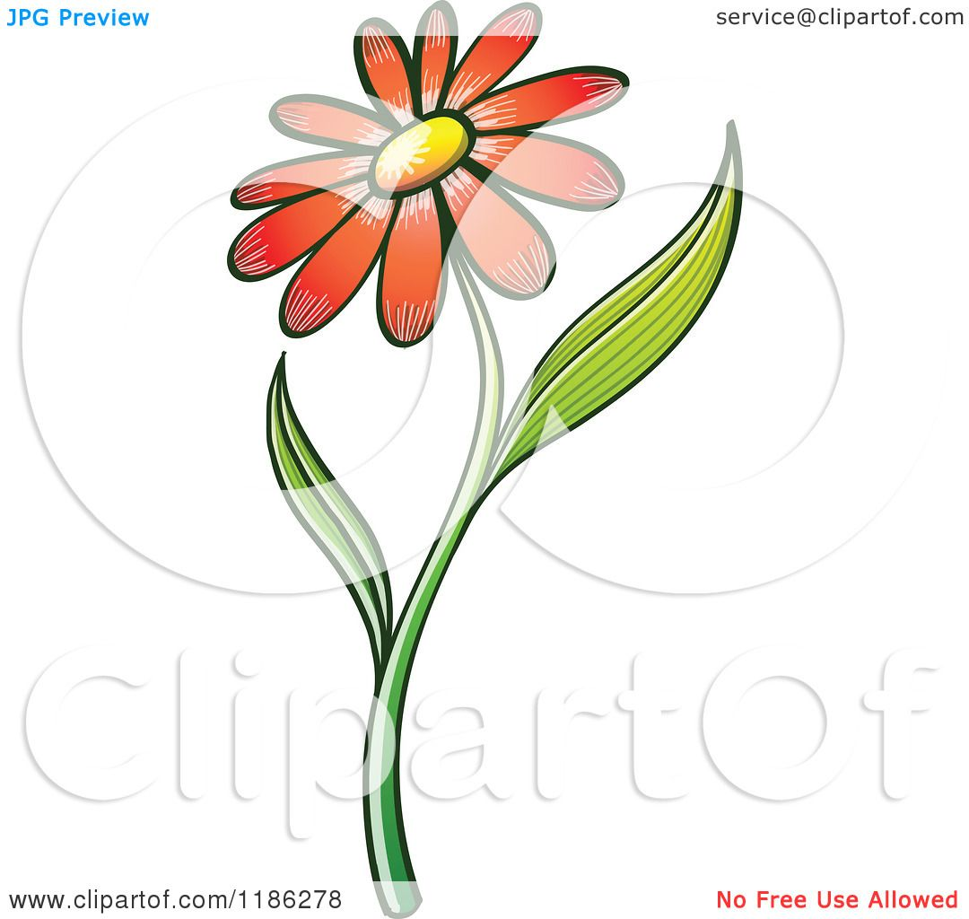 Cartoon of a red daisy flower and stem royalty free vector clipart cartoon of a red daisy flower and stem royalty free vector clipart by zooco izmirmasajfo