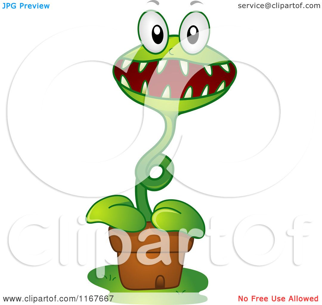 Venus Fly Trap Animation Cartoon Venus Fly Trap