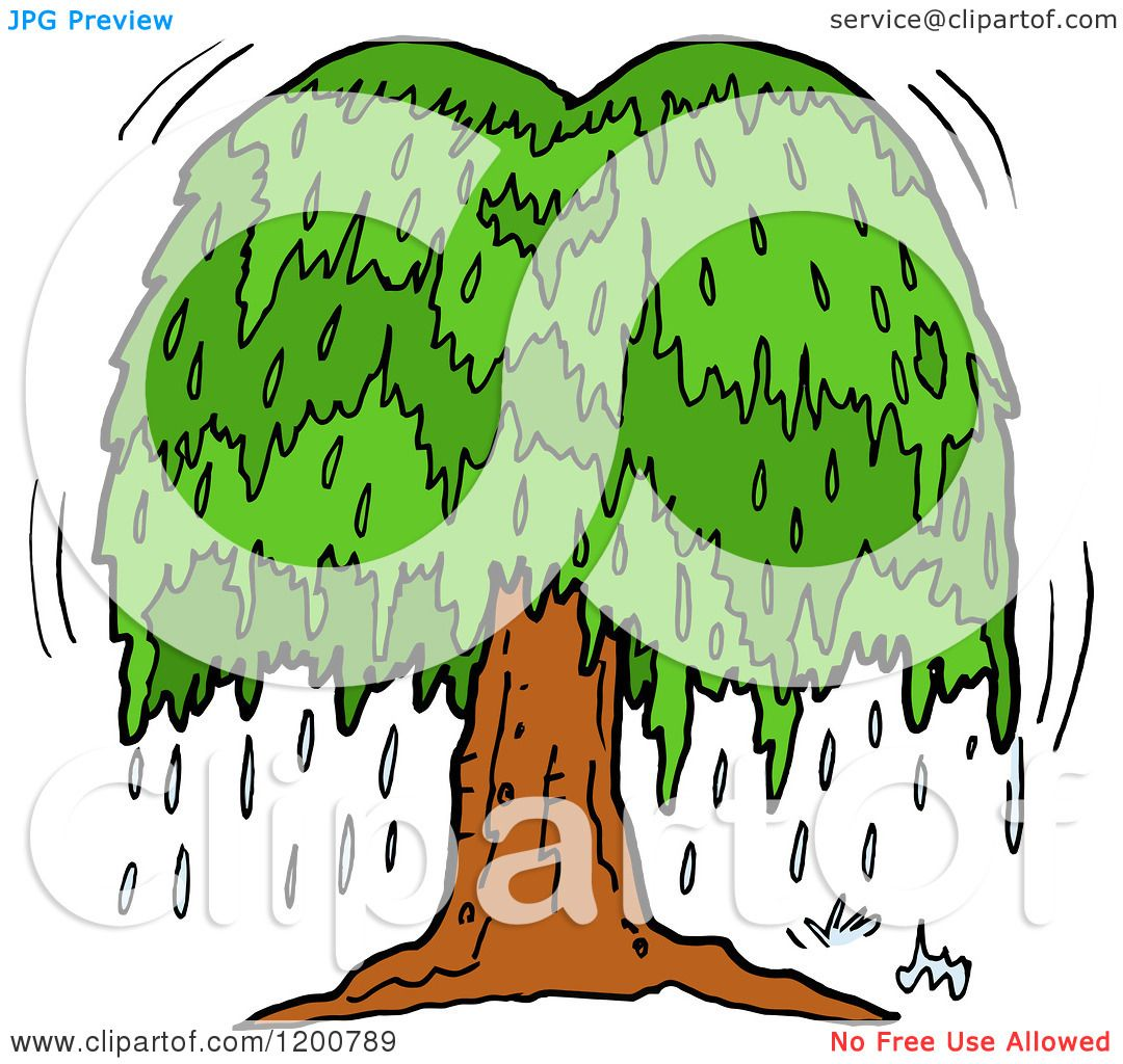 cartoon of a weeping willow tree with tears royalty free vector rh clipartof com willow tree silhouette clip art willow tree clip art images