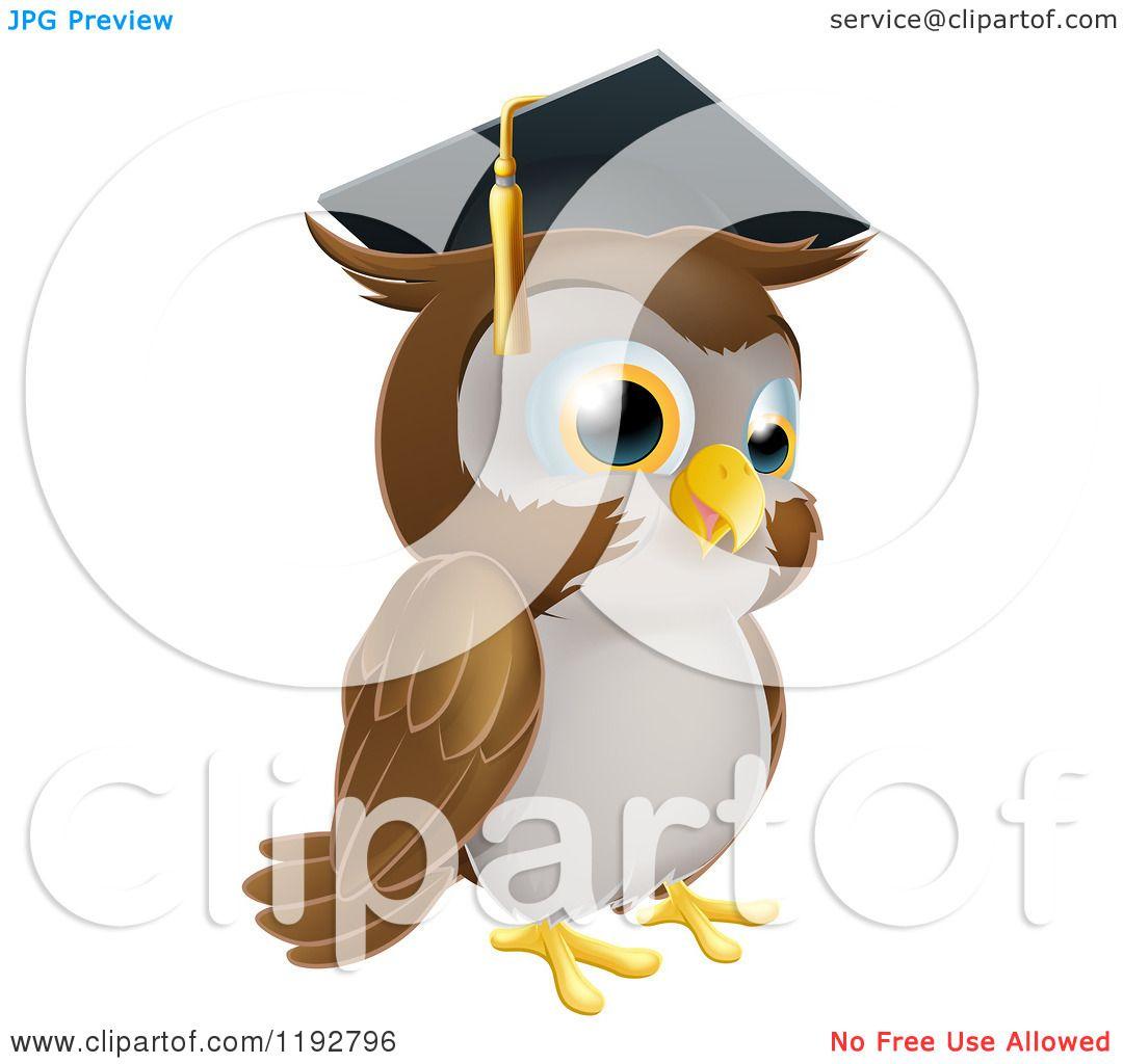 Cartoon Of A Wise Professor Owl Wearing A Graduation Cap