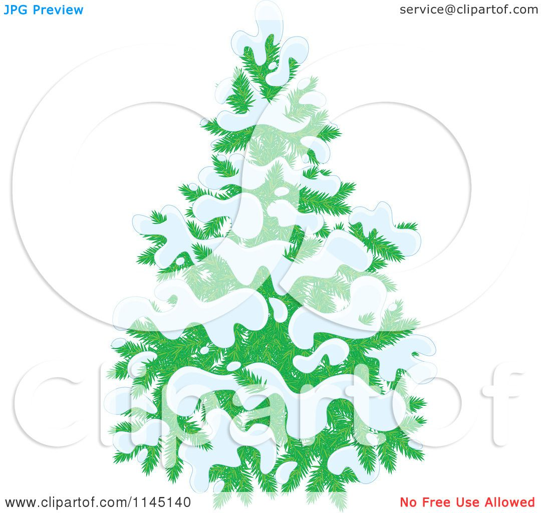 An Evergreen Christmas.Cartoon Of An Evergreen Christmas Tree Flocked In Snow